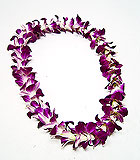 Orchid Lei - Single Dendrobium