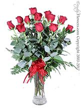 Dozen Long Stem Red Roses Valentines Delivery