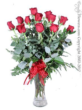 Fesselnd V1 Dozen Long Stem Red Roses